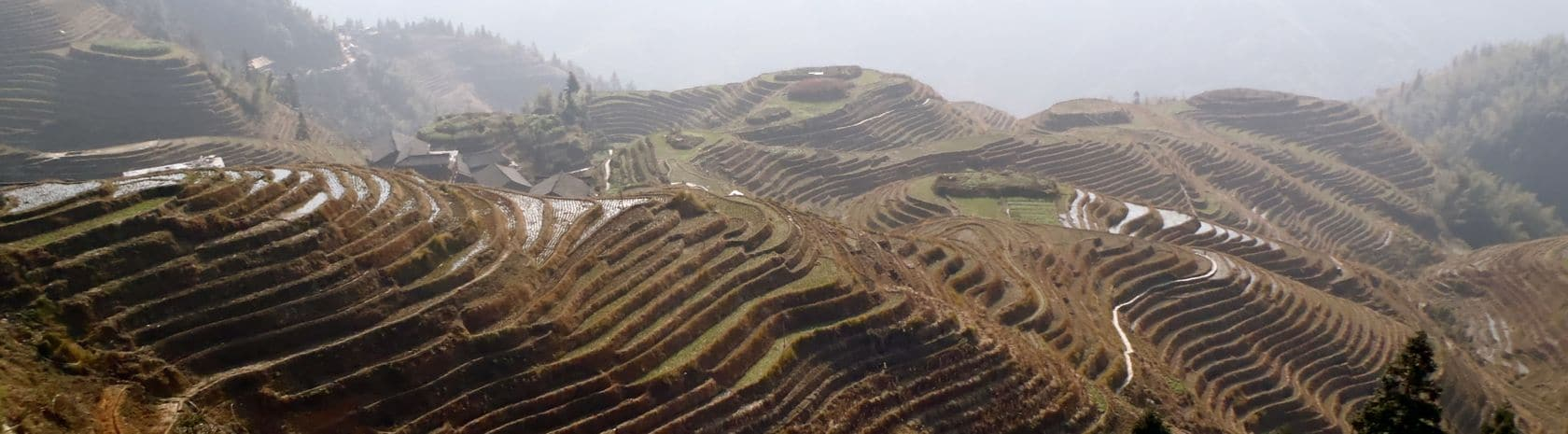 Longji Terraces