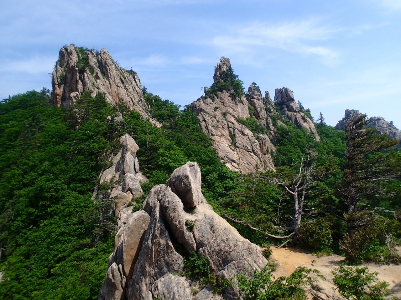 Gongnyong