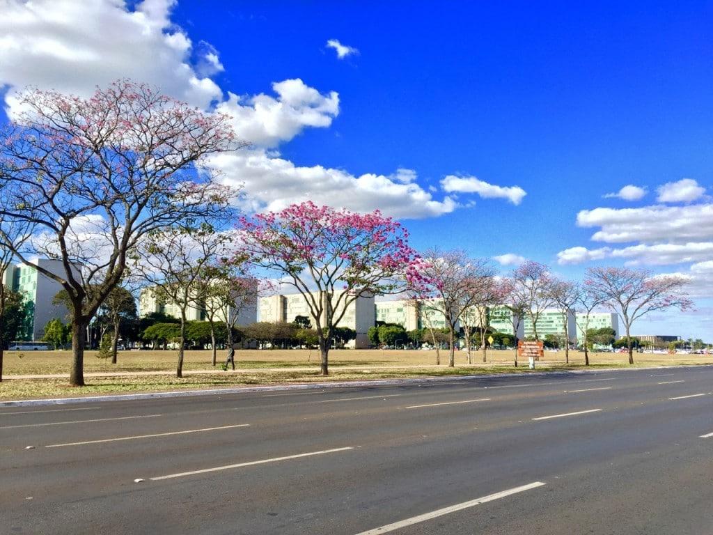Brasilia-bis - 2