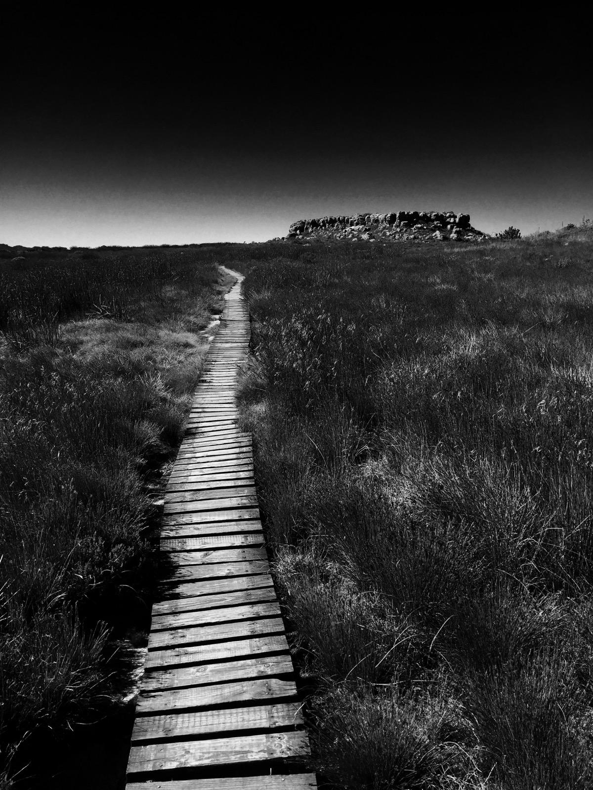 Table Mountain - 12