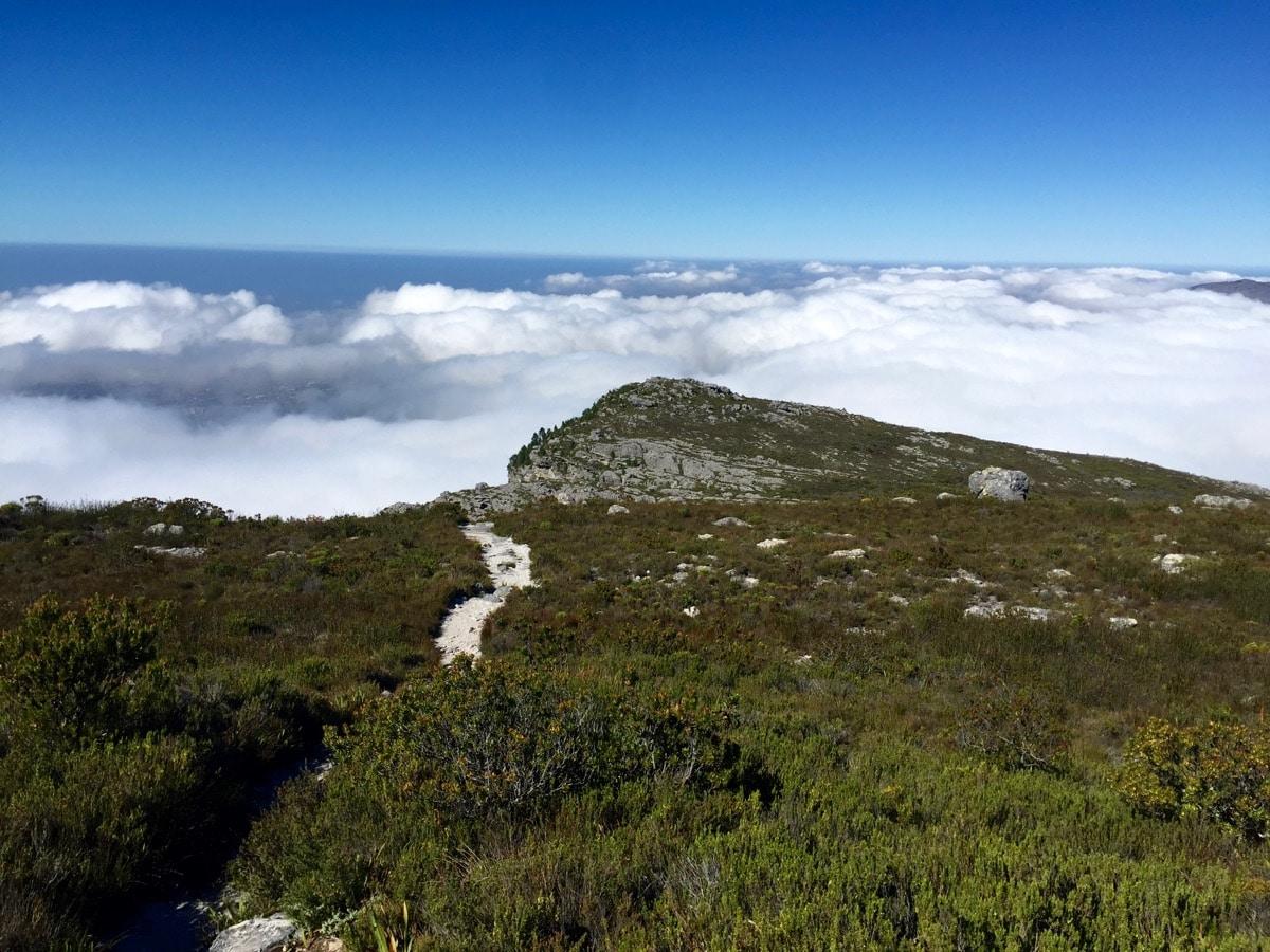 Table Mountain - 14